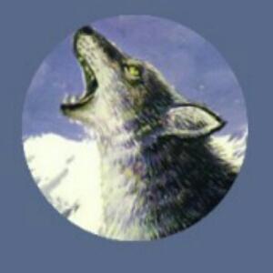 银河奥特狼