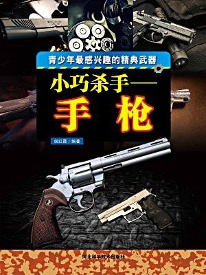小巧杀手:手枪