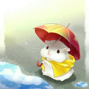 撑伞的小仓鼠