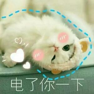 yushang