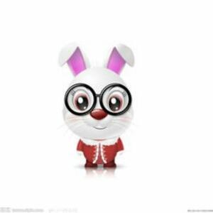 有文化的兔子