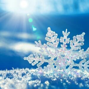 阳光下的雪