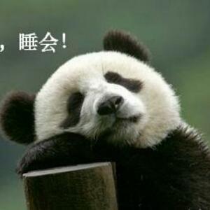 乖乖小熊猫