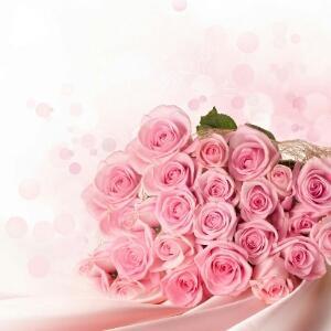 长着刺的玫瑰花