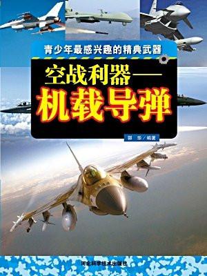 空战之王:空空(地)导弹