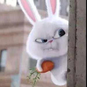胖胖的大兔子