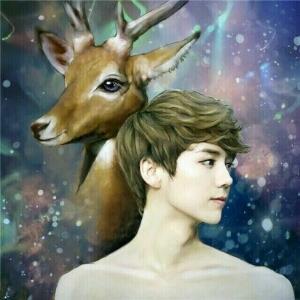 邪魅妖姬独爱鹿